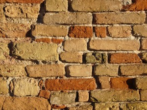 genealogy, ancestral brick walls, family tree